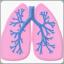 Пациенту главная_о заболеваниях: легкие - иконка